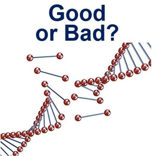 a discussion of the opinions on genetic engineering and its importance Genetically modified (gm) foods contain at least one ingredient coming from a  plant with an altered genetic composition genetic modification.