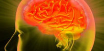 Neuroscientists peer into brain seeking roots of suicide