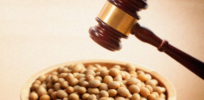 GMO patent controversy 2: Supreme Court cases of farmers Bowman and Schmeiser