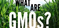 "It's practically impossible to define ""GMOs"""