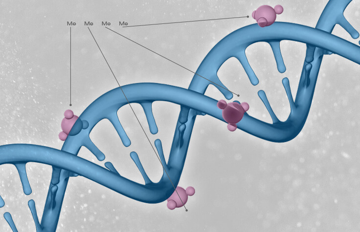 epigenetics-oncology-carousel-web-graphic-inset