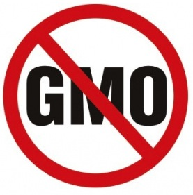 Image result for anti gmo