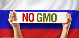 Russian social media 'bots' push GMO-autism link, new report shows
