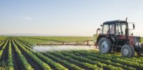 FDA plans to begin testing foods for glyphosate residues