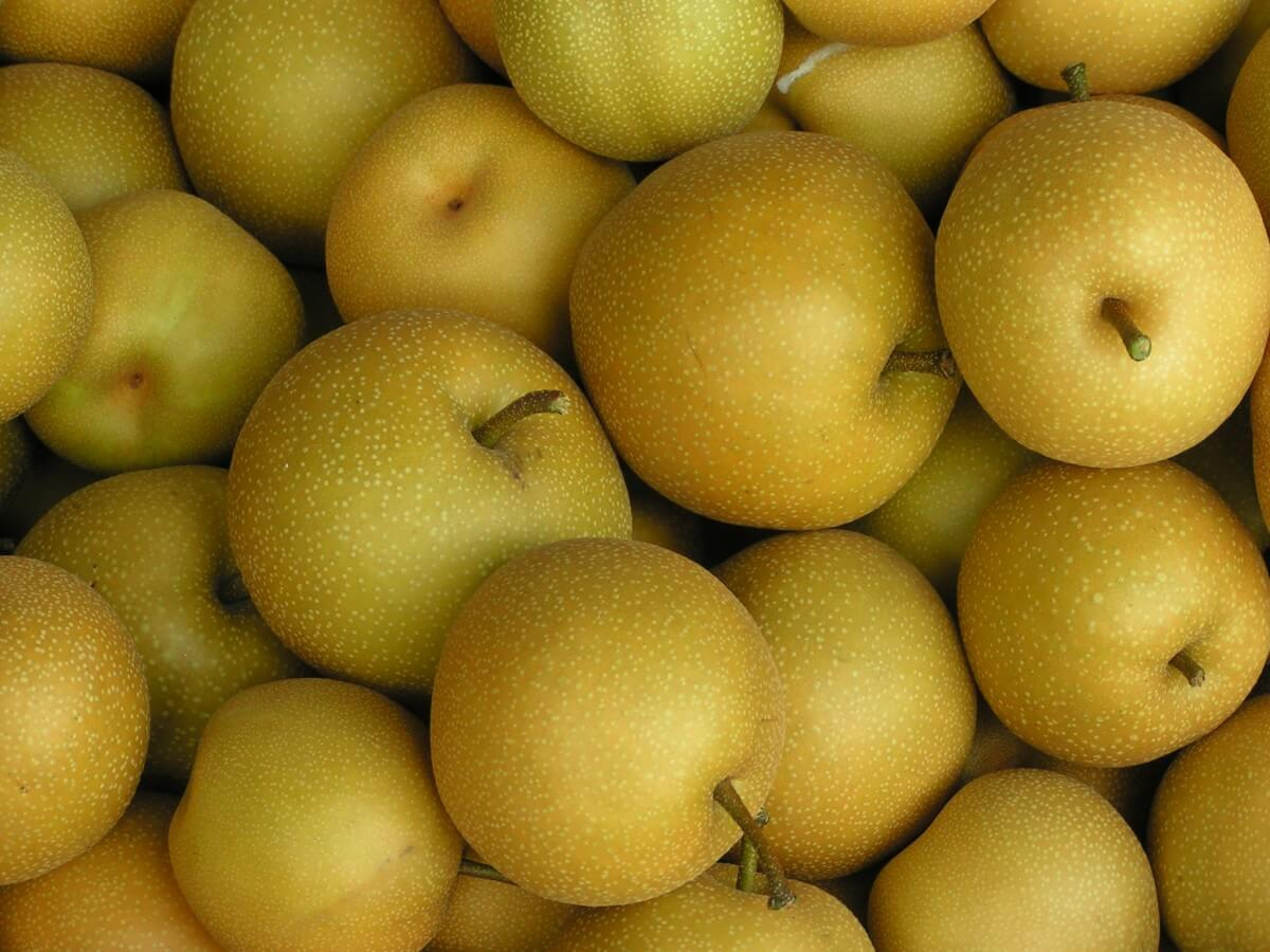 Some delicious conventional Asian Pears
