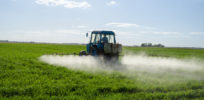 Despite activists' claims about glyphosate dangers, there's no cancer spike in Argentina