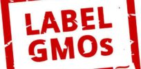 Demand for mandatory GMO labeling could boomerang on critics, increasing safety perceptions