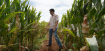 GMO master