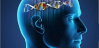 CRISPR may help neuroscientists unlock genetics of psychiatric disease