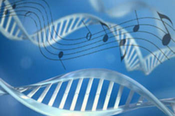 Finding meaning in the music of our genes