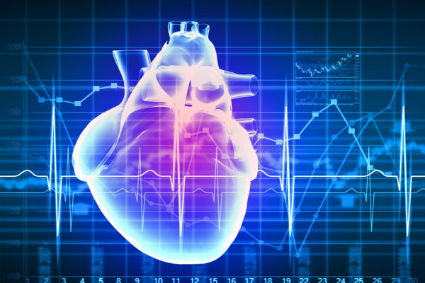 Reinforcing the human heart: Integrating human cells, electronics and nanomaterials