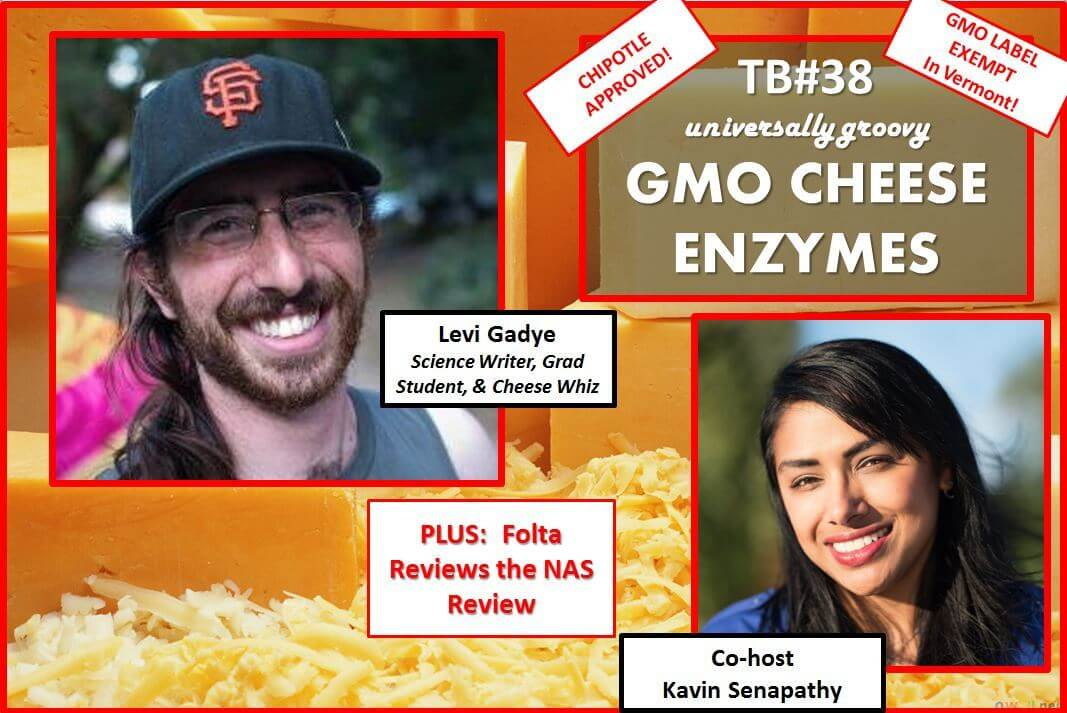 038-Cheese-enzymes