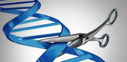 header gene cutting iStock Large