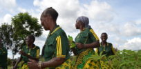 Group members dance in joy because of the liberator cassava variety x