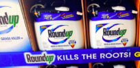 Glyphosate may become target of massive lawsuits