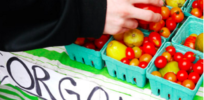 Is organic really more sustainable?