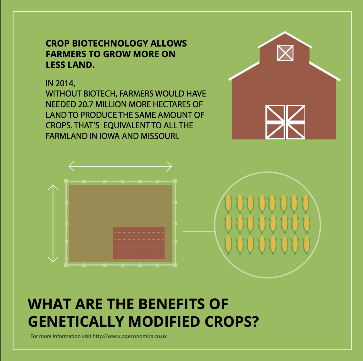 an analysis of the effects of genetically modified foods on biotechnology What effects could genetically modified crops have on so more comparative analysis of new technologies and current are genetically modified plant foods safe.