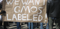 GMO labeling may be more about marketing than transparency