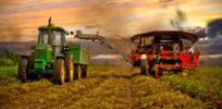10 truths about GMOs, organics and modern farming