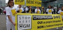 stop bebe ogm alliance vita article large