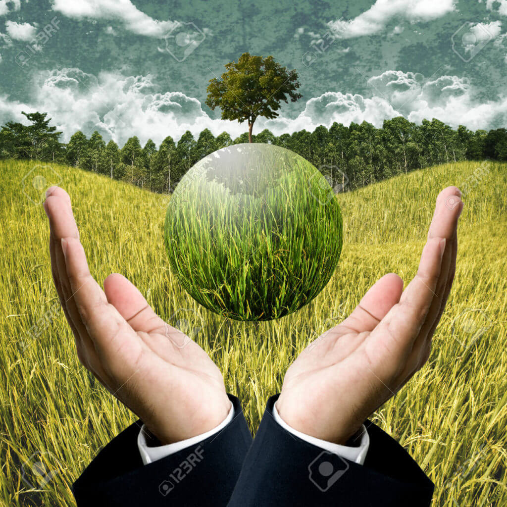 Sustainable agriculture business for save the earth concept Stock Photo