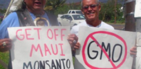 Scientists failure to understand GMO opposition hindering technology's progress
