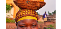 NGO interference delaying Uganda's GMO solution to Banana Wilt crisis