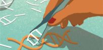 DIY CRISPR-Cas9: Should we fear or embrace programmable gene editing kits for the home?