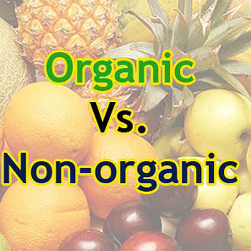 organic food essay Because organic foods do not use fungicides and such, they are also frequently contaminated with bacteria and naturally occurring toxins that are harmful for human.
