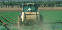 Pesticides impact health in farming communities, GMOs can reduce their use