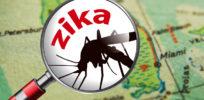 dt florida map zika x