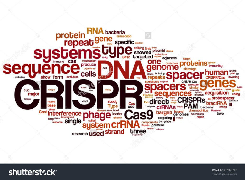 stock photo crispr cas system for editing regulating and targeting genomes biotechnology and genetic
