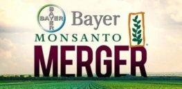 Bayer MonsantoMerger