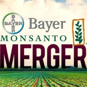 Bayer MonsantoMerger