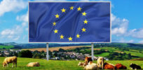 EU regulations contributing to consolidation in biotech, agrochemicals industries