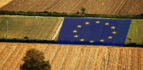 How will Bayer-Monsanto merger affect future of GMO crops in EU vs. US?