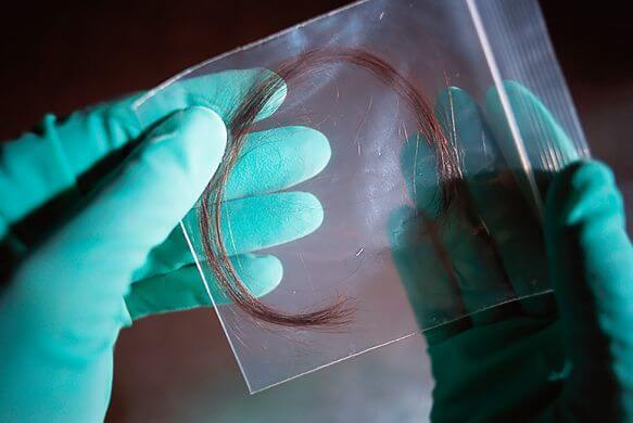 dna for forensics Journal of forensic research discusses the latest research  environmental forensics,  related journals of forensic dna analysis journal of forensic research.