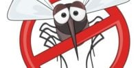 Frustrated Floridian has had it--Satirical rebuke of activists blocking GMO mosquitoes