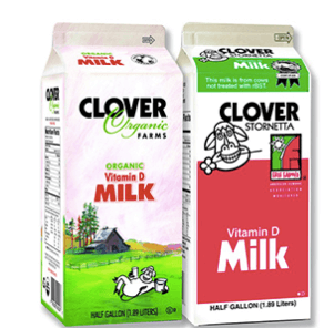 Clover Dairy to begin marketing conventional milk produced with non-GMO feed