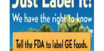 Are GMO labels 'a Trojan horse for big government intervention' in our food supply?