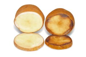 Potato browning (the Simplot potato on the left)