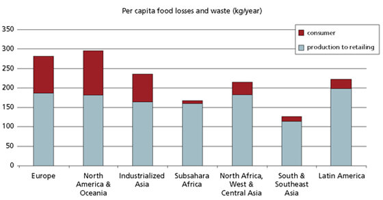 According to the FAO, per capita food losses and waste, at consumption and pre-consumptions stages in different regions