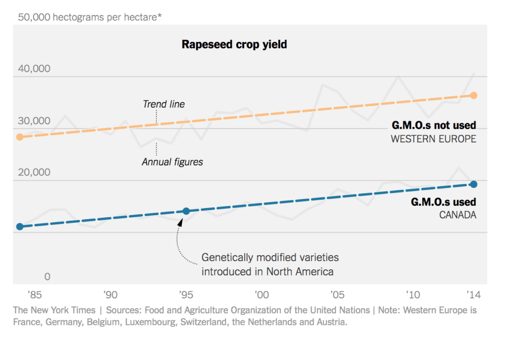 From Danny Hakim: Canada and Western Europe grow different varieties of rapeseed (canola), but Canadian farmers have adopted genetically modified seed, while European farmers have not. Still, the long-term yield trend for both areas is up.