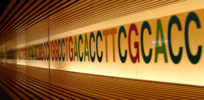 DNA crowdsourcing: Startup Genos plans to pay you for your genetic information
