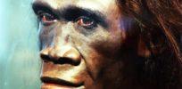DNA of unknown extinct human ancestor species found