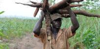 February Nigerian farming e x