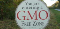 Are 'GMO-free' zones an organic industry marketing ploy?