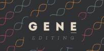 Gene editing for dummies: Video on how CRISPR works
