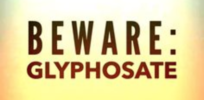 Could glyphosate cause other health problems even if it's not carcinogenic?
