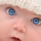 All blue-eyed people are related